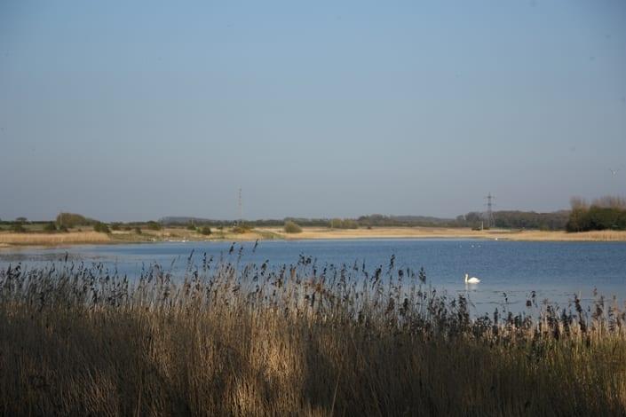 Marton Mere Nature Reserve